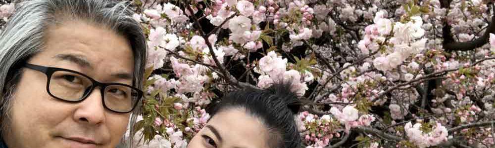 桜の花見中の夫婦