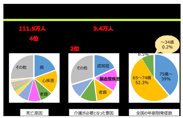 脳血管疾患(脳卒中)が、日本人の死因別に占める割合を年齢別に示した図。要介護になる原因となることを示した図